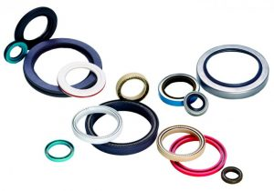 ptfe_flexilip_and_flexicase_rotary_seals